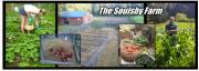 Soulsby Farm
