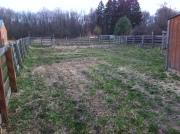 farm field spring