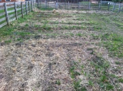 spring farm prep
