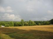 summer field sky