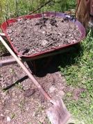 manure wheelbarrow