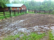 rain on farm