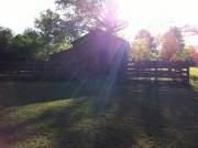 sunshine barn farm