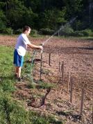 farm irrigation
