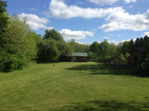 Sunny summer farm day