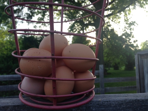 brown eggs sunset